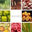 植物與糧食